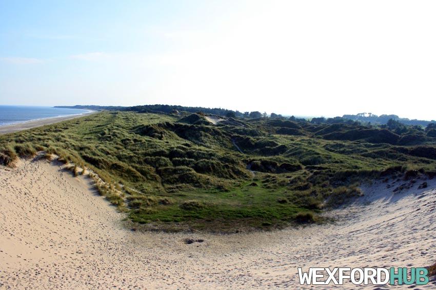 Curracloe Sand Dune