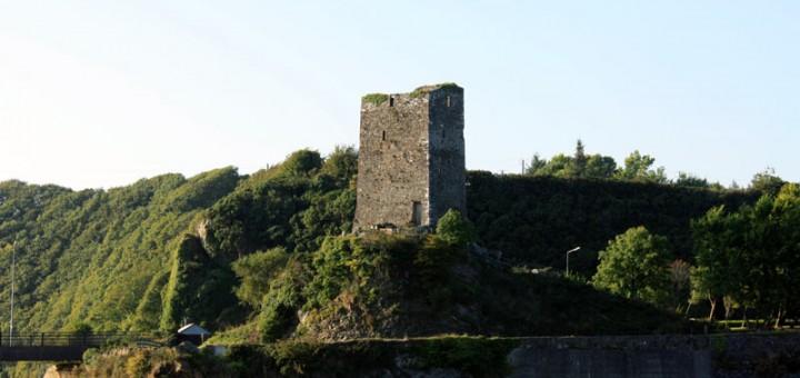 ferrycarrig castle, wexford