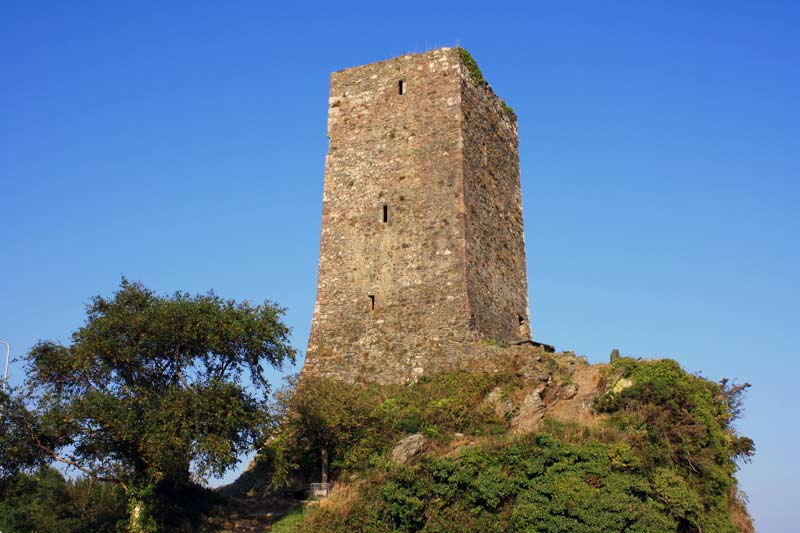 ferrycarrig tower