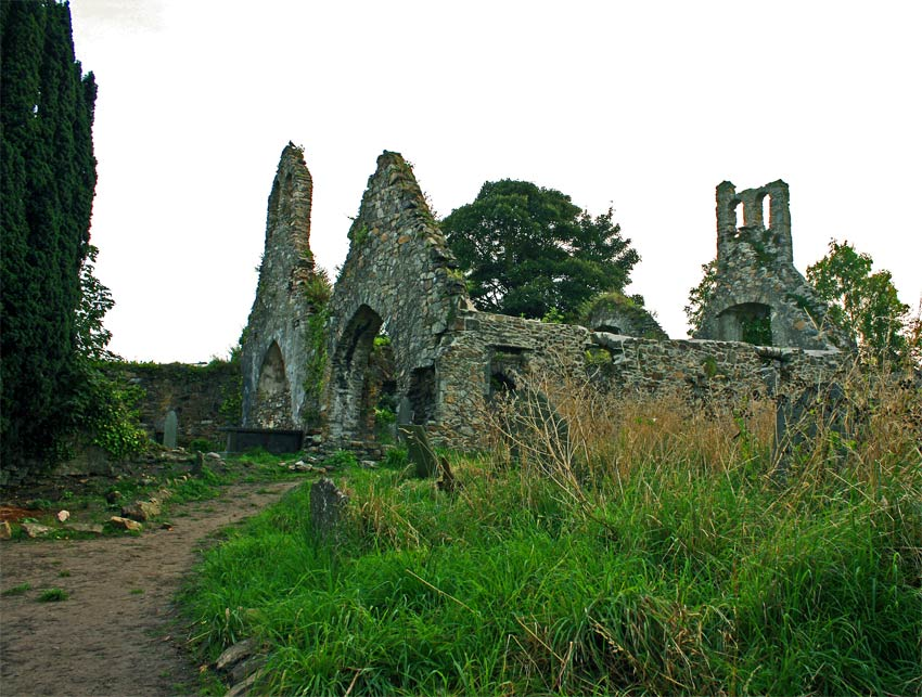 Saint Patrick's Church in Wexford Town.