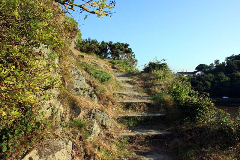 Steep Steps
