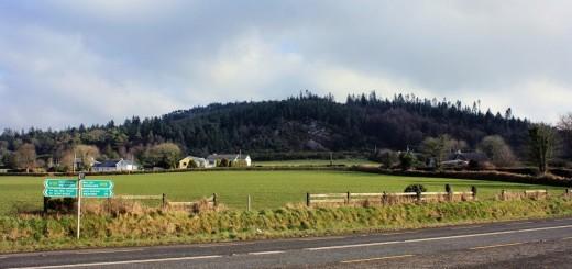Carrigbyrne Hill