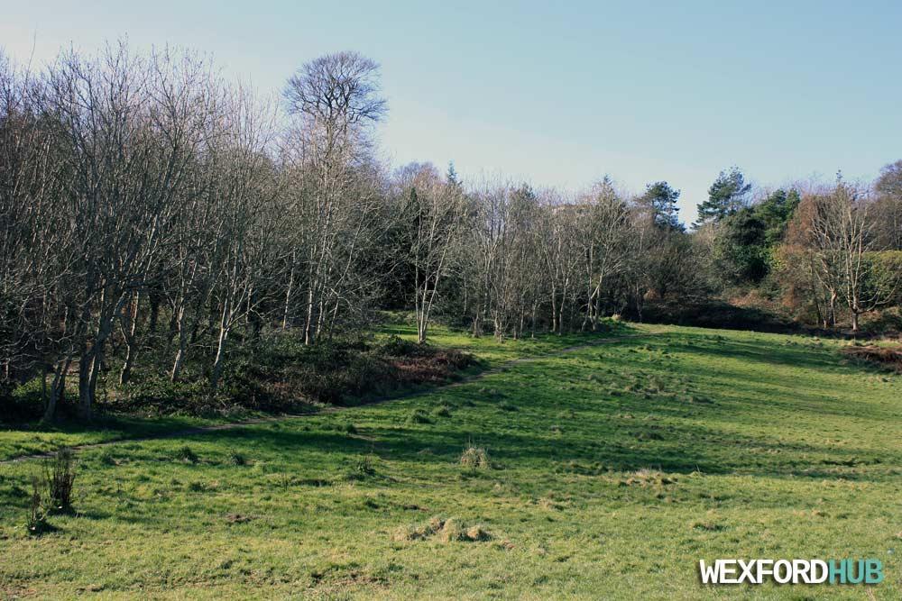 Trespan Rocks, Wexford